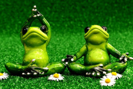 thumb Kinder Yoga Frogs